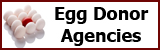 eggDonorAgencies2